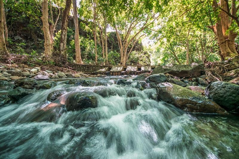 Black River Gorges | Gorges de la Rivière Noire